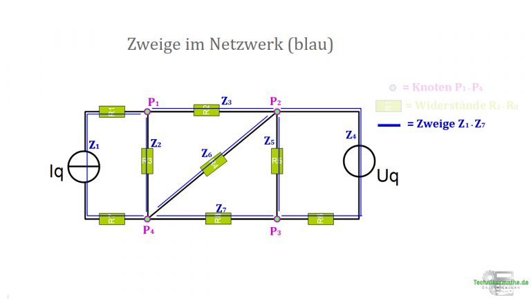 Zweige im Netzwerk