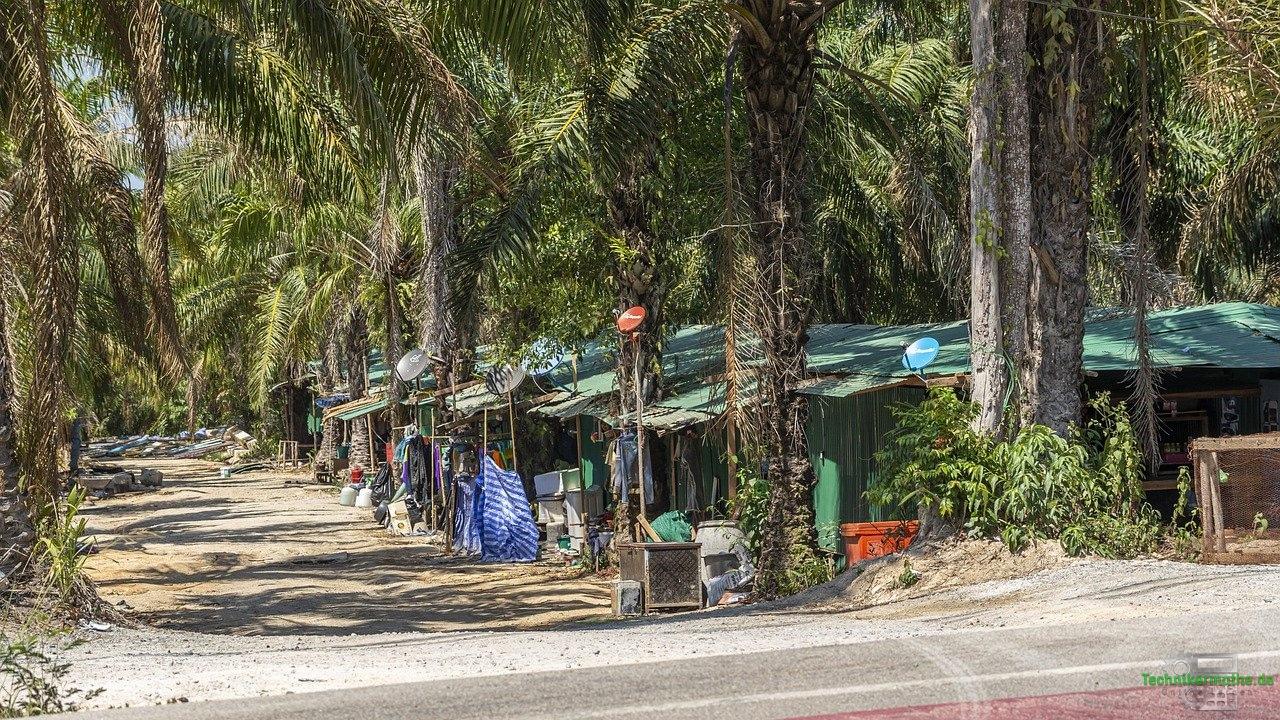 Siedlung auf Haiti