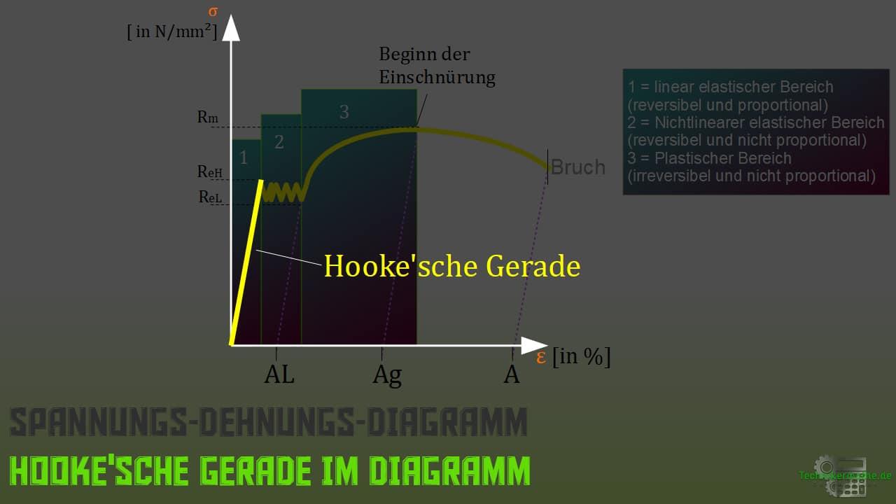 Hookesches Gesetz, Hookesche Gerade